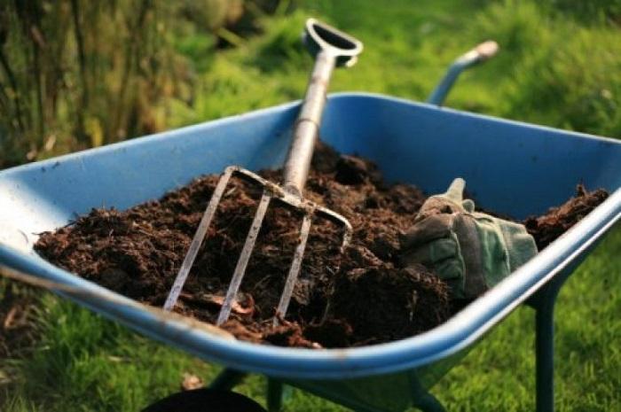 Органические удобрения требуют больших финансовых и трудозатрат, но они оправданы повышением естественного плодородия почвы.