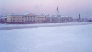 Сорта роз для выращивания в Ленинградской области. Низкая инсоляция, высокая влажность и обильные осадки – основные черты петербуржского климата.