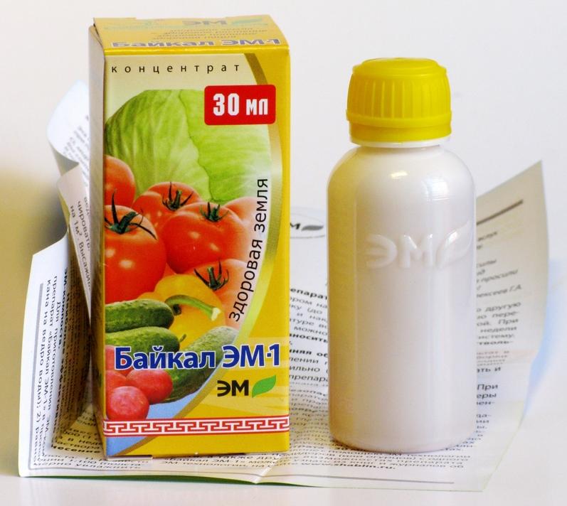 Удобрения для роз осенью. «Байкл ЭМ1» преобразует органические отходы в эффективное удобрение
