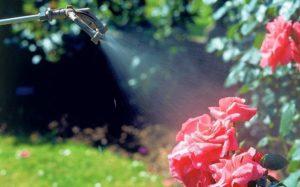 Для опрыскивания стимуляторами лучше использовать распылитель с режимом «туман».