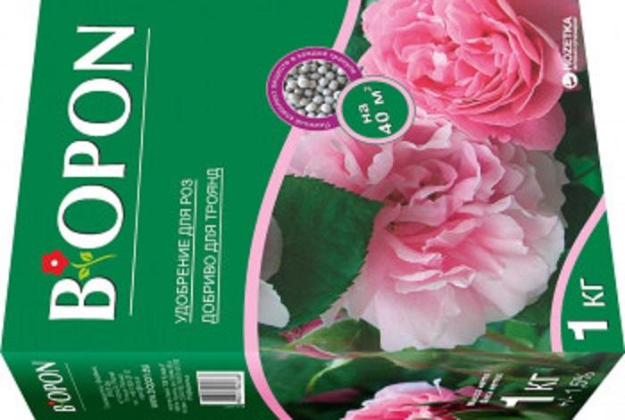 Комплексные минеральные удобрения для роз обязательно содержат бор, их удобно использовать для полива под корень и корневых подкормок. При этом дополнительное внесение бора не требуется.