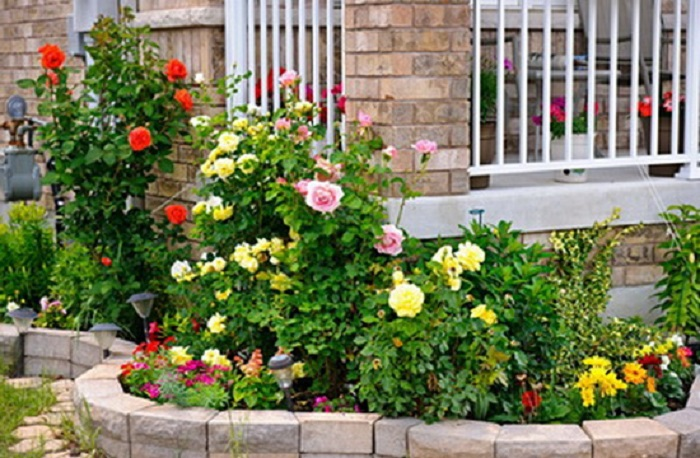 Дизайн сада своими руками: фото и интересные идеи 16