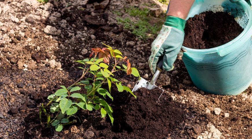 Чтобы улучшить почву, которую выкапывают из ямы, ее равномерно перемешивают с добавками.