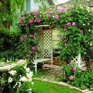 Пергола может выполнять функции шатра или садовой беседки.