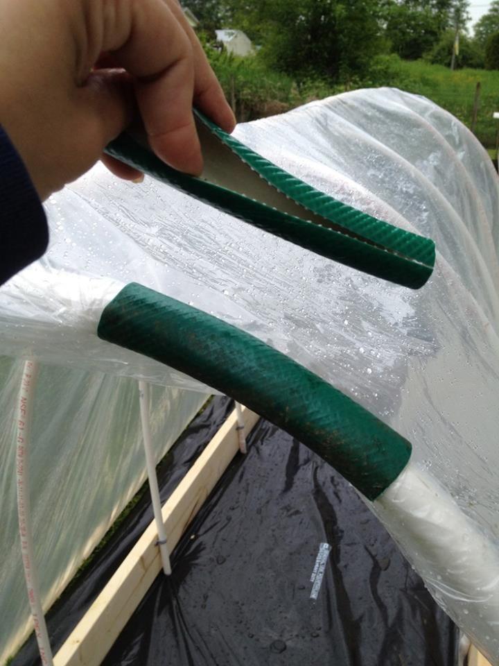 Для крепления укрывного материала на каркас пригодятся обрезки старого шланга.