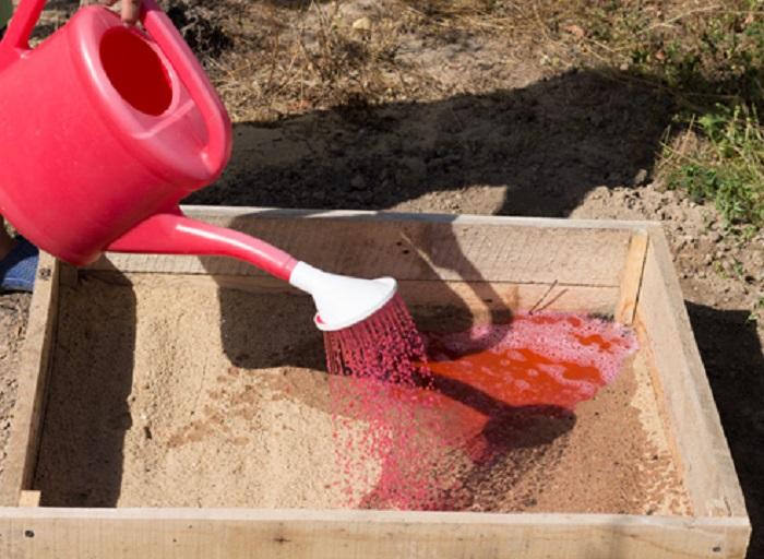 Грунт череночника должен быть рыхлым, преимущественно песчаным, и простерилизованным перманганатом калия.