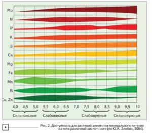 Кислотность грунта влияет на доступность микроэлементов при внесении удобрений под корень.