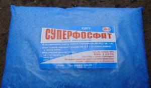 Суперфосфат лучше применять отдельно от других химических веществ, потому что оно плохо растворяется. Для каждого куста розы достаточно 40 – 60 г/м2. Допускается одновременное использование с калийными удобрениями