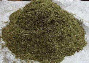 Травяная речка перед применением должна быть слегка подвялена на солнце.