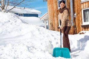 Передержка в коробках или в снежном прикопе подходит только для спящих саженцев