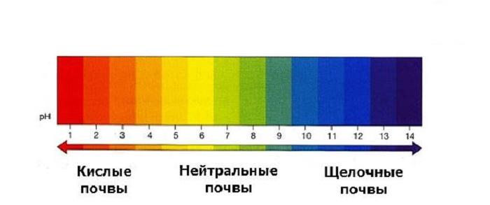 рН < 6 почва кислая, рН – 6,5 – 7,5 - нейтральная pH > 7,5 – щелочная.