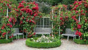 В окружении роз на шпалере зона отдыха выглядит нарядной, как изысканная гостиная в доме. Такая тенденция в ландшафтном дизайне получила девиз – «Сад продолжение дома».