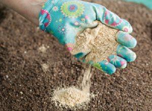 Простой суперфосфат в виде порошка более экономичный продукт, но требует определённых условий хранения: любое попадание влаги может привести к изменению свойств удобрения
