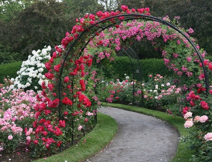 Как сделать арку для роз своими руками