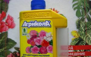 Внекорневая подкормка «Агриколой» помогает розам восстановиться после болезни, нашествия вредителей, засухи и других неблагоприятных факторов.