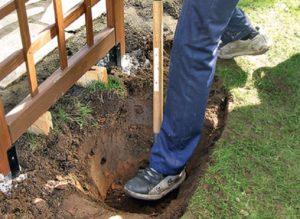 Подготовка посадочной ямы для розы с комом такая же, как для саженца с открытой корневой системой.