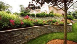 При высоком залегании грунтовых вод, для посадки роз сооружают террасу с подпорной стенкой.