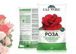 Для хранения роз в коробках нужно запастись большим количеством торфа – маленькой упаковки не хватит
