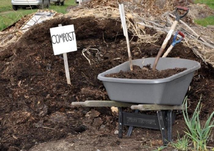О готовности компоста говорит его однородность, рыхлость. Частицы растений не определяются.