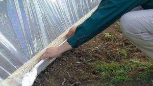 Укрывной материал нужно укрепить надежно, чтобы его не разрушил сильный ветер.
