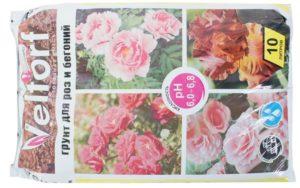 Мини-плетистых розы успешно растут в универсальном субстрате для цветущих растений.