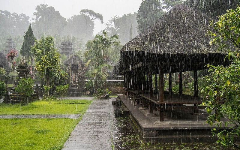 Жизнь наших на Бали: как переехать на пмж. Стоимость жизни на Бали (Андрей Буренок)